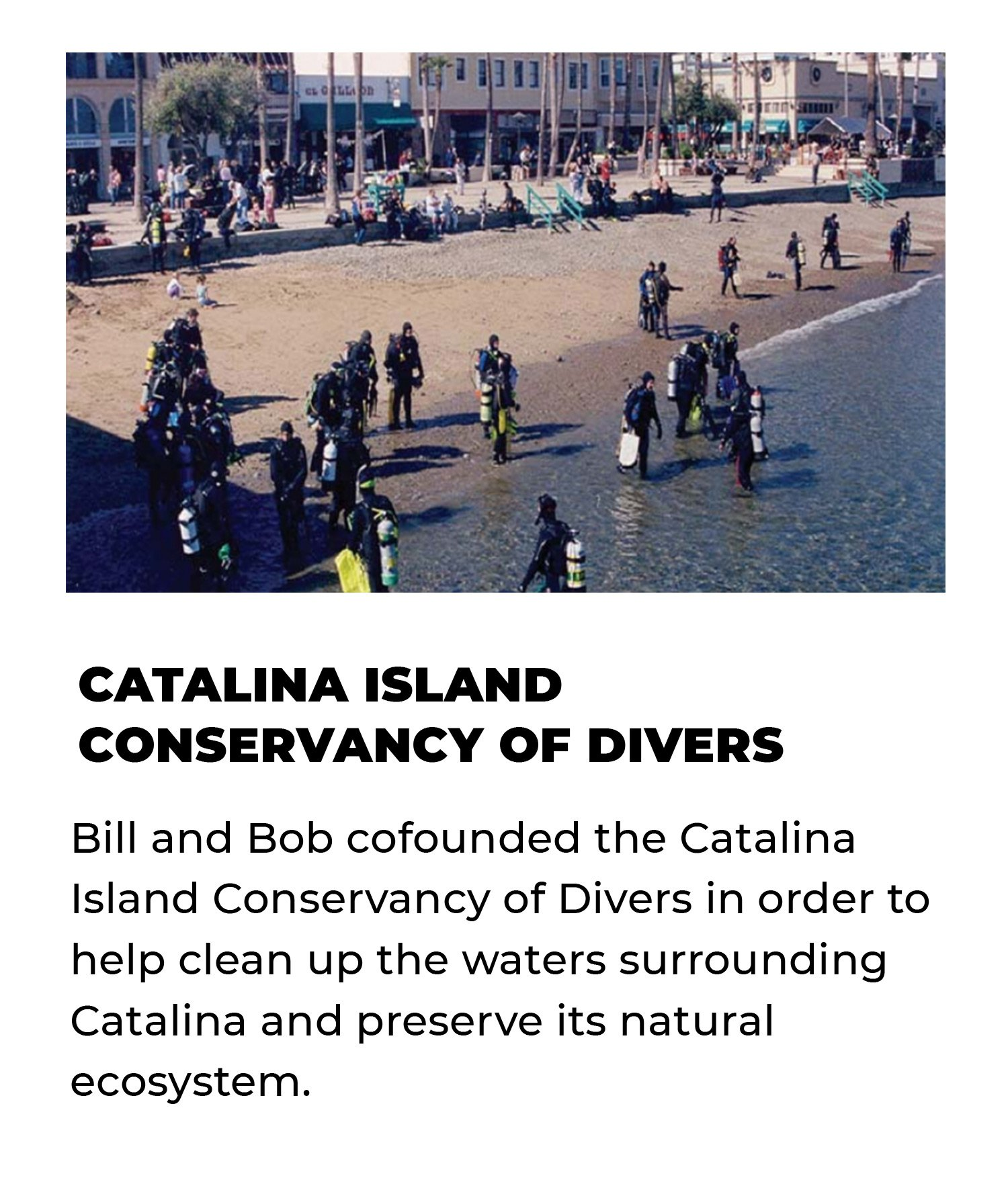 Catalina Island Conservancy of Divers | Bill and Bob cofounded the Catalina Island Conservancy of Divers in order to help clean up the waters surrounding Catalina and preserve its natural ecosystem.